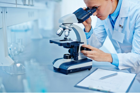 Школьники должны знать обо всех научных открытиях за последние 10-15 лет – Васильева